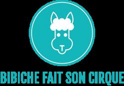 Logo Bibiche fait son cirque, texte et image